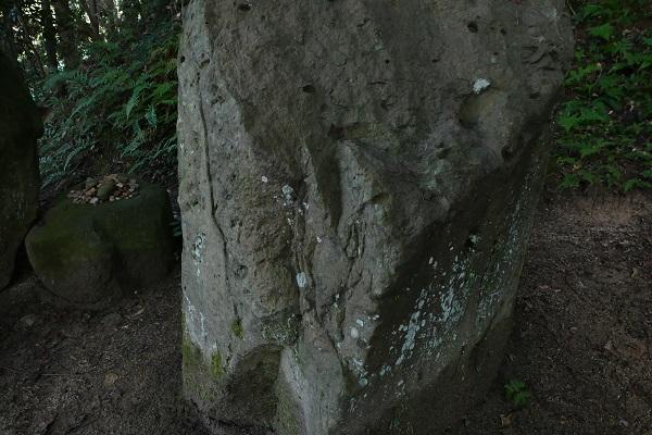 p1220279-6